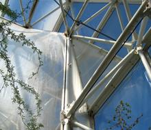 Biosphere X