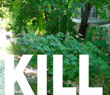 A User's Guide to the Fall Kill Creek